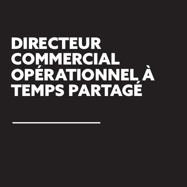 frederic-lechiche-directeur-commercial