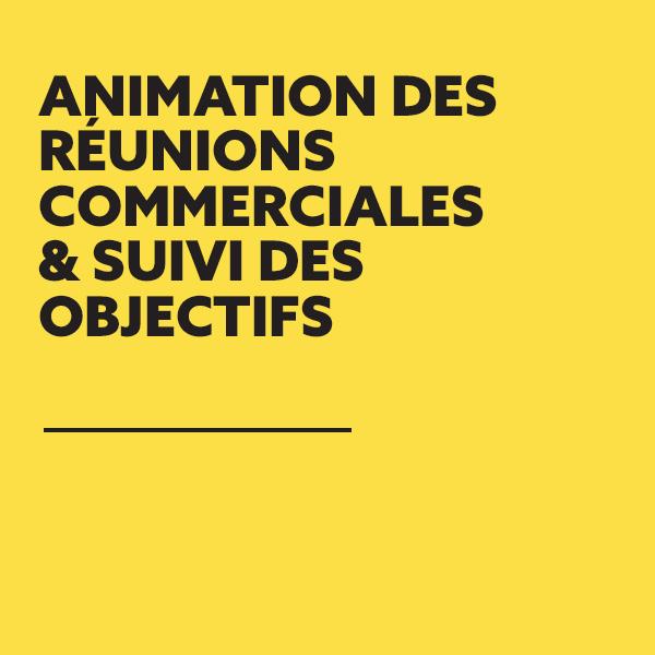 FREDERIC-LECHICHE-ANIMATION-REUNION-SUIVI-OBJECTIFS-01