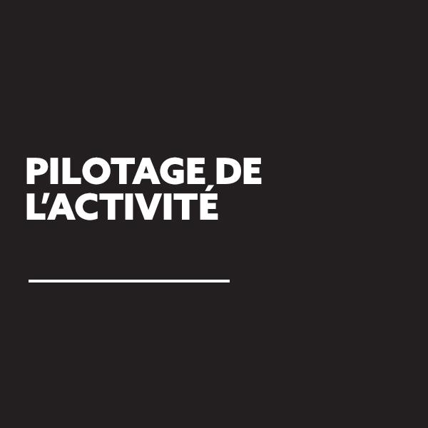 FREDERIC-LECHICHE-PILOTAGE-ACTIVITE-01
